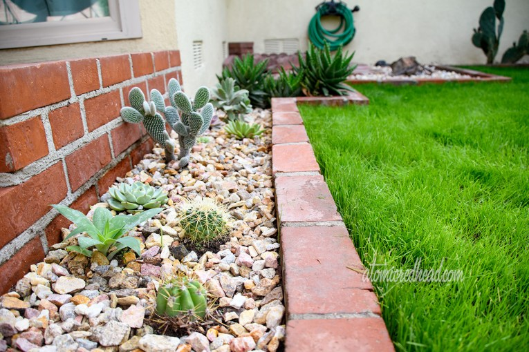 A brick planter edges the house, with various cacti and succulents, surrounded by tan and pink rock.