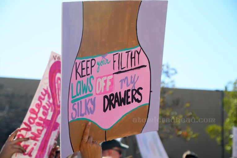 "A sign features a woman's body from the waist to mid-thigh, wearing pink underwear, upon which reads ""Keep Your Filthy Laws Off My Silky Drawers"""