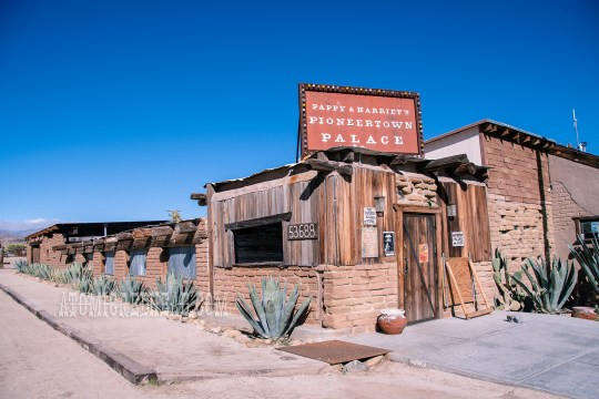 "Exterior of Pappy & Harriets, a stucco and wood rustic western building with large agave plants growing on the edge. A large sign rising above the front door reading ""Pappy & Harriet's Pioneertown Palace"""