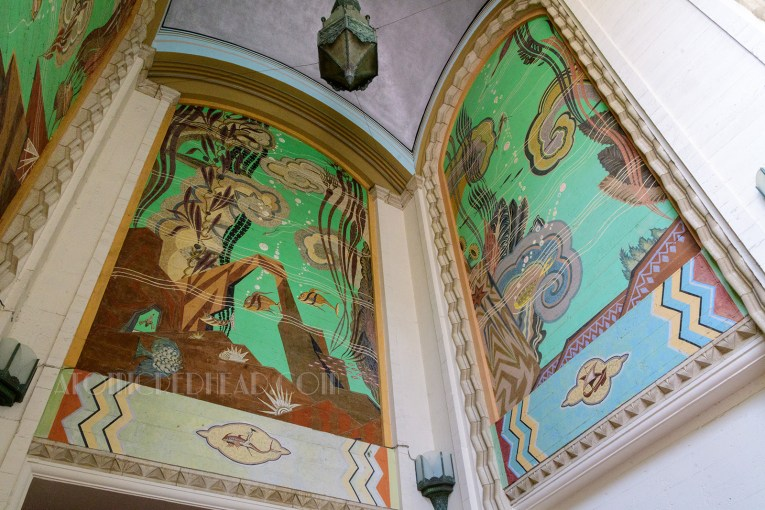 Two tall murals depicting sea life, including fish, seaweed, and rocks.