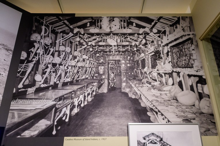 "Black and white photograph of the inside of Glidden's ""museum"" which is floor to ceiling covered in human bones."
