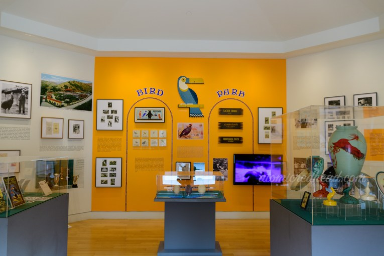 Overall image of the Bird Park room at the museum.