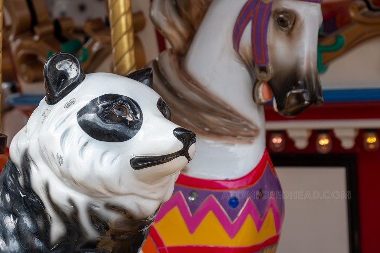 The face of a panda, another carousel animal.