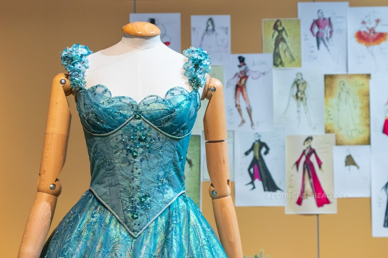 The Cinderella costume from the Disney show Once Upon a Time. The dress is a blue, sleeveless formal gown, with swirls embroidered on it, and some beading detail.