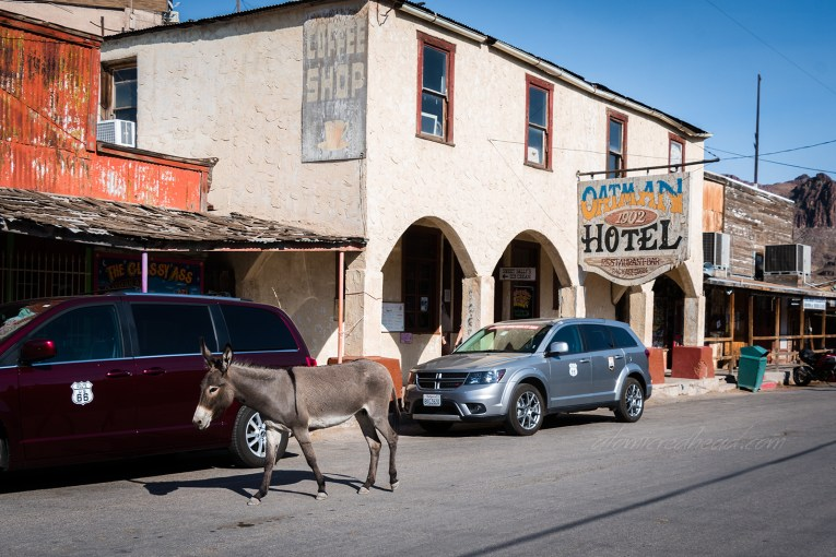 The stucco facade of the Oatman Hotel. Cars and donkeys line the streets.