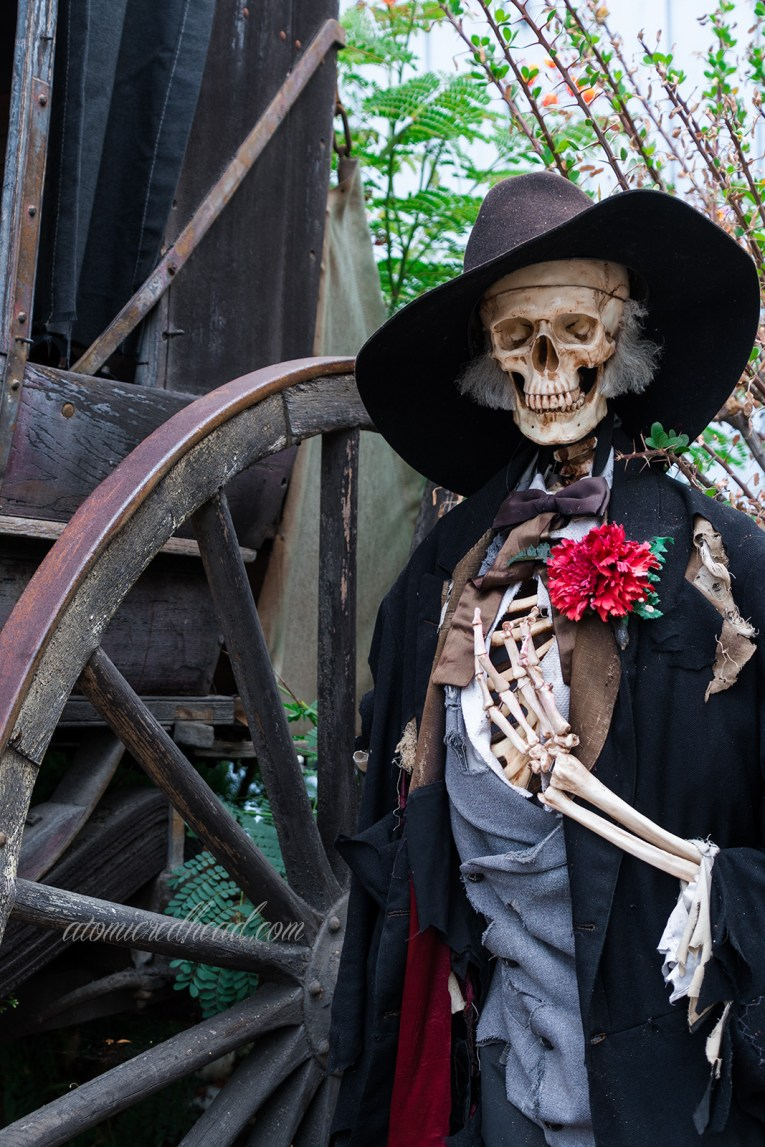 A skeleton wearing a large black cowboy hat and wearing a black tux with a red flower stands near a stagecoach.