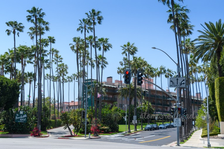 The pink and green Beverly Hills Hotel sits behind a plethora of tall palm trees.