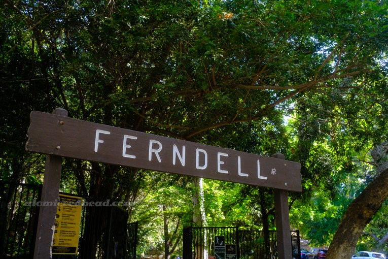 """A brown sign stands at the front of a lush green space. The sign reads """"Ferndell"""" in white letters."""