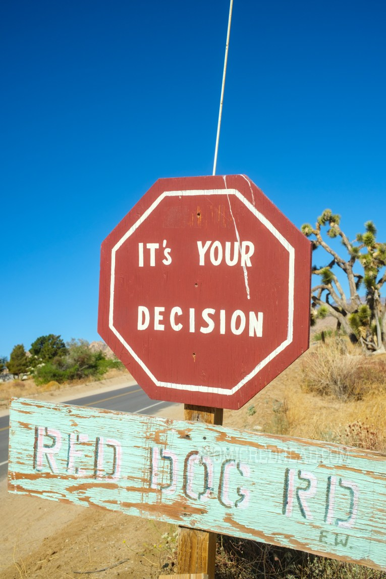 """A red hexagon shaped sign reads """"It's Your Decision"""" and a seafoam sign below reads """"Red Dog Rd."""""""