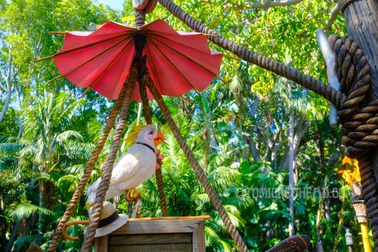 A cockatoo sits perched on a wooden crate, with the greenery of the Jungle Cruise attraction behind.