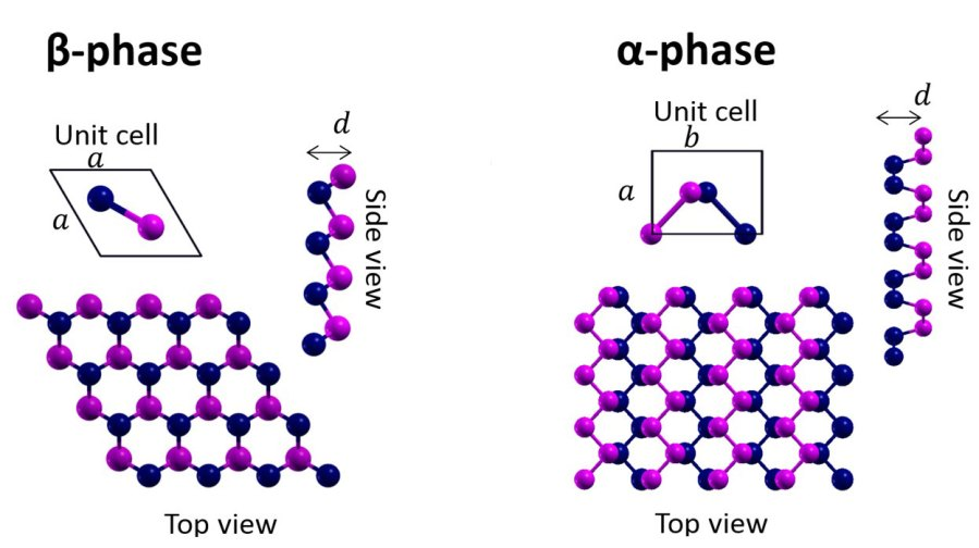 Buckled and Puckered monolayers
