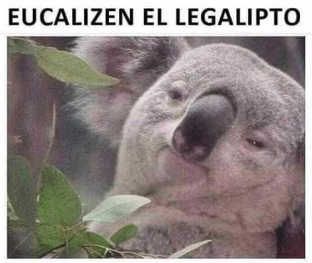 Legalipto