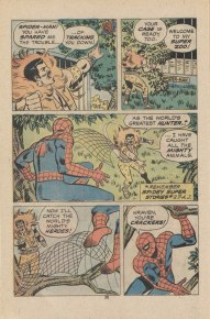Spidey Super Stories Co-Starring Falcon Page 6