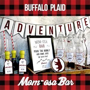 Buffalo Plaid Baby Shower Momosa Bar