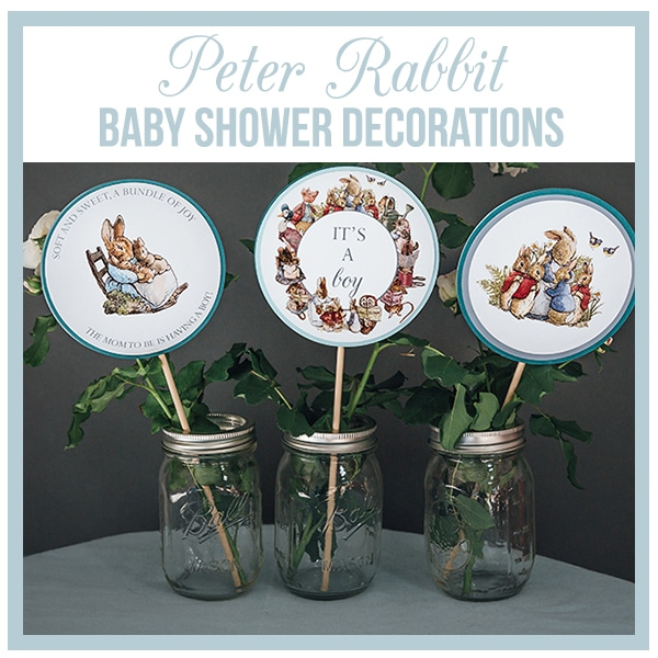 Peter Rabbit Beatrix Potter Baby Shower Decorations