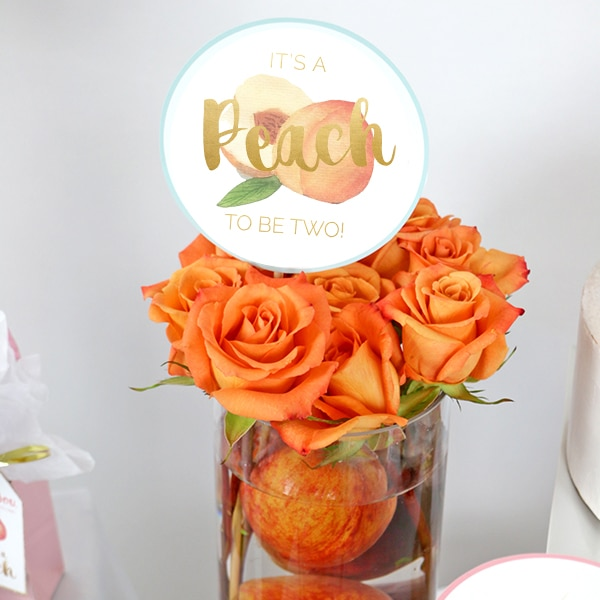 It's A Peach to Be Two Centerpiece Sticks