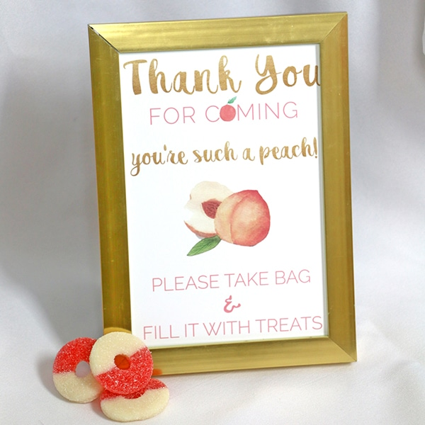 Peaches Birthday Party Candy Bar Sign 5 x 7