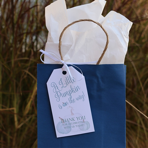 Little Pumpkin Boy Baby Shower Favor Tags: Little Pumpkin Baby Shower Ideas