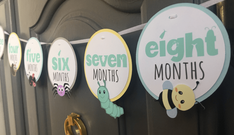 How to Make a Cricut 1st Birthday Picture Banner