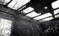 092913 Fort Tilden Rocka392