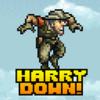 Harry Down