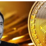 Will crypto replace fiat currency? Elon Musk comments on Bitcoin