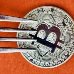 Everything You Need to Know before November Bitcoin Fork