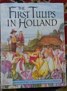 The First Tulips in Holland