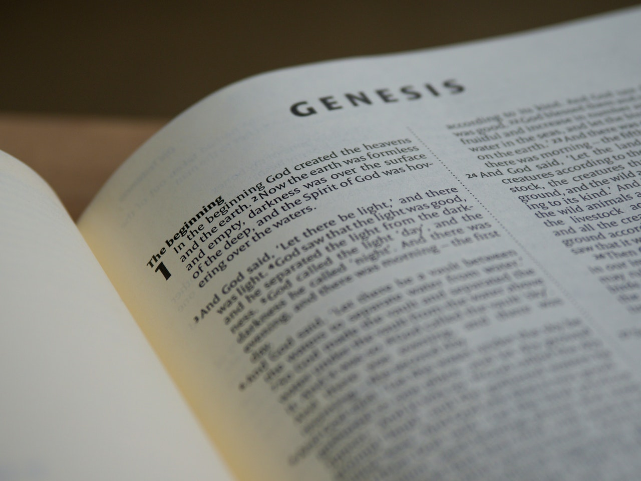 bsf studying book of genesis fall 2020 atozmomm.com