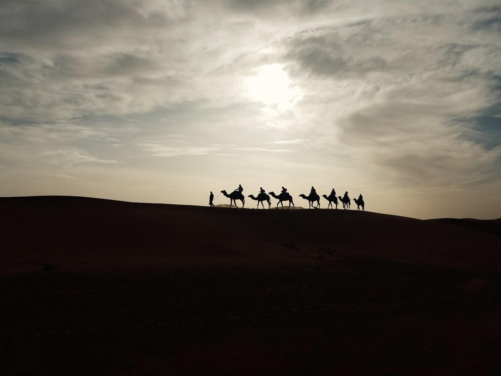 picture of camels magi visiting jesus www.atozmomm.com
