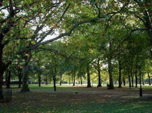 London Green Park web