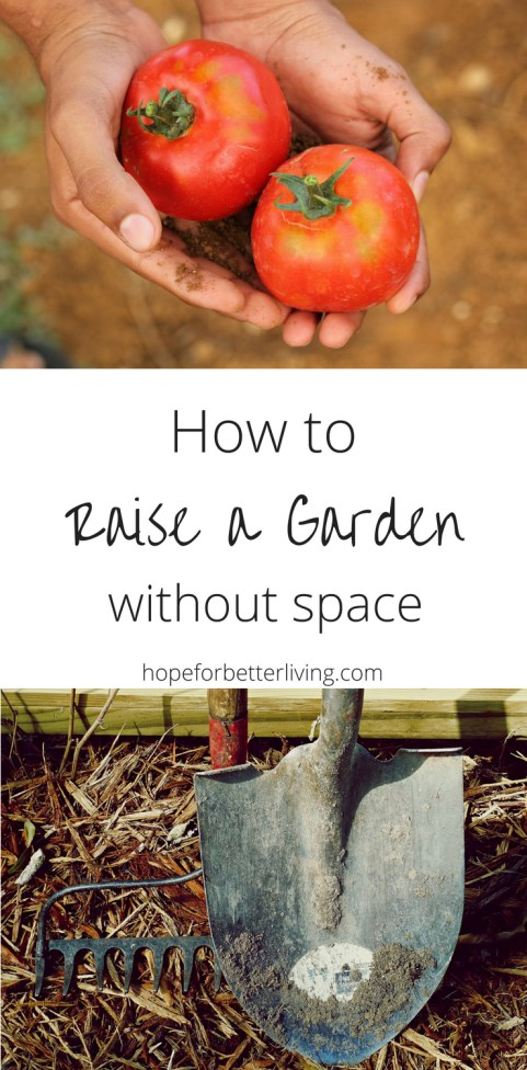 Don't have space for growing veggies? Here's how you can still raise a full size vegetableg garden without land!