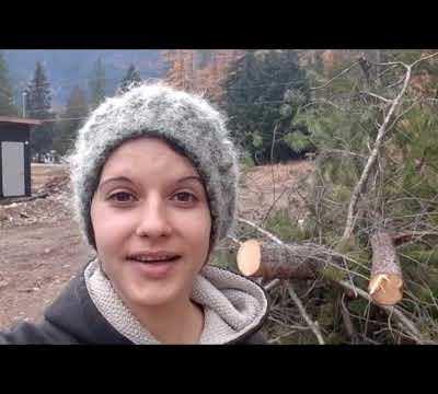 Our Mountain Farmstead: Week 6-7