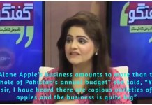 A Pakistani anchor confused Apple Inc with the fruit during the live programme.