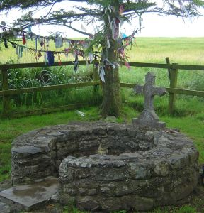 Sr. Bridget's Well