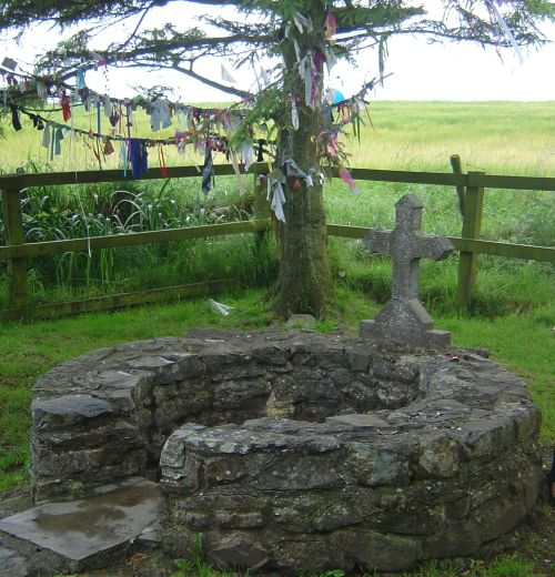 The clooties/clooties at St. Brigid's Holy Well, Co. Kildare