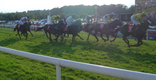 Horse racing at Bellewstown, Co. Meath.