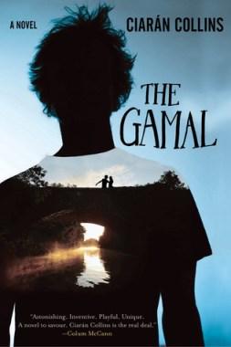 The gamal a novel
