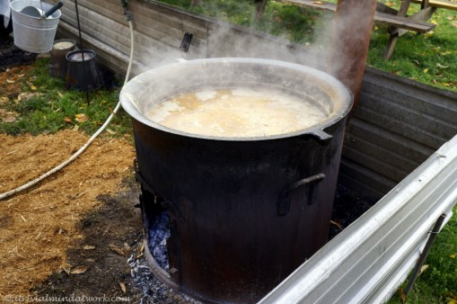 Boiling beans.