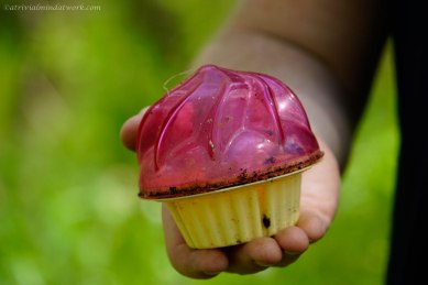 A cupcake cache!