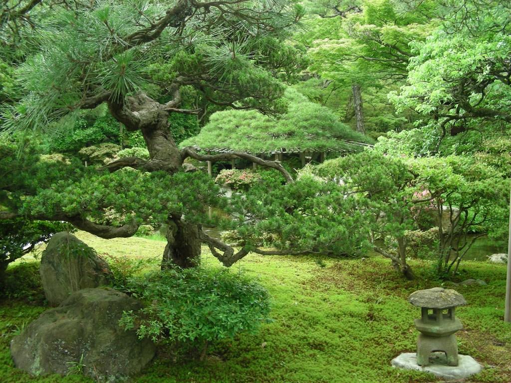 Japón de Mochileros