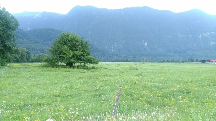 Eslovenia en Furgoneta