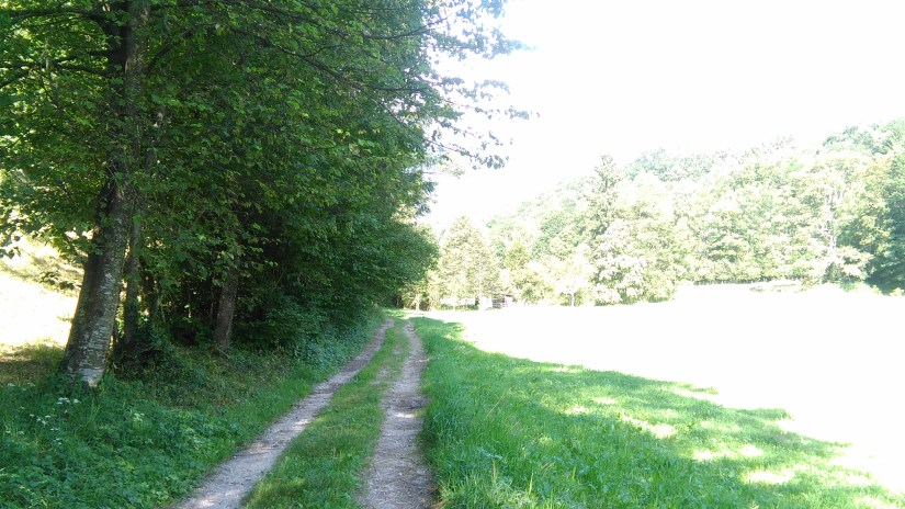Caminando por eslovenia
