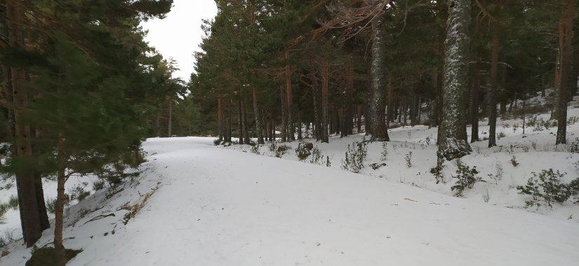 Barranca nevada