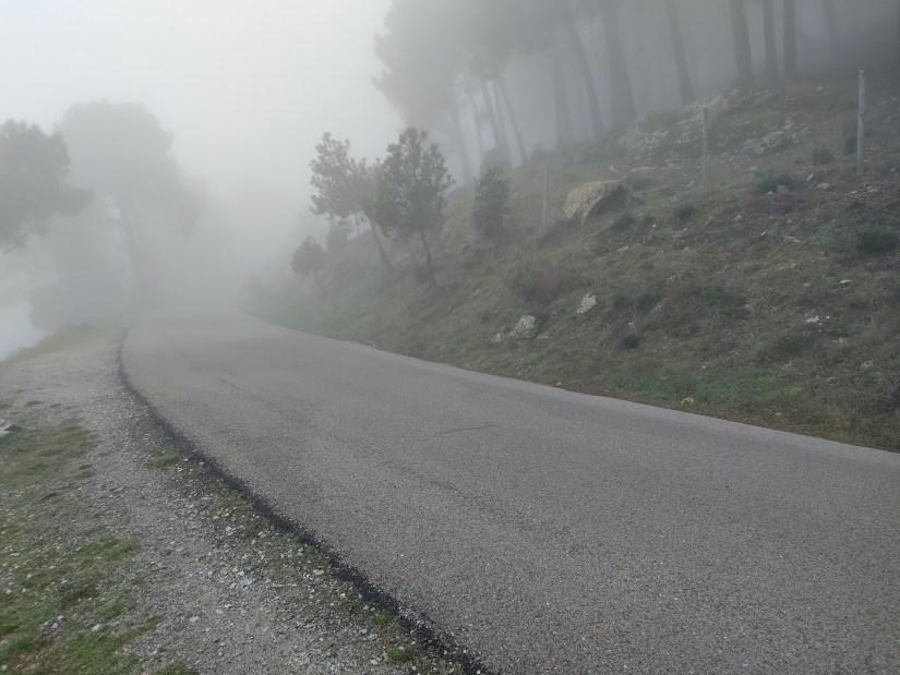 Niebla ne la montañaa
