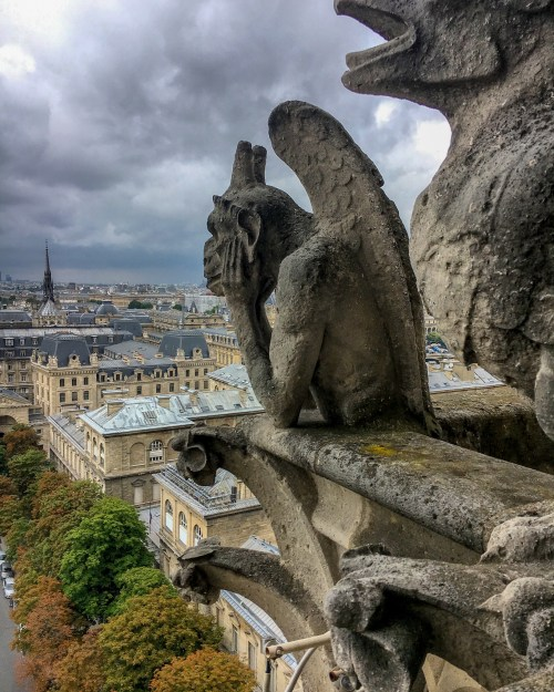 Gargoyle looking out over rooftops of Paris in the distance