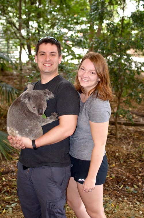 Man and woman holding a koala, who is chewing eucalyptus leaves