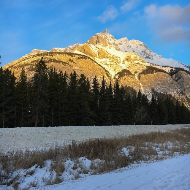 Winter Mountains in The Canadian Rockies