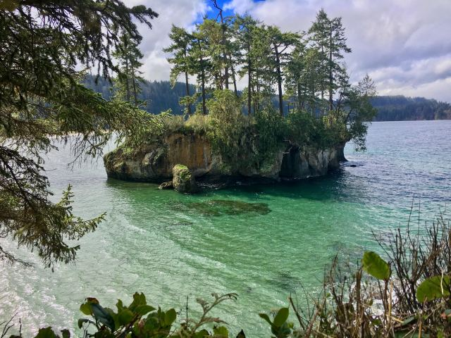 Sea stack covered in trees and surrounded by shallow water on Olympic Peninsula road trip
