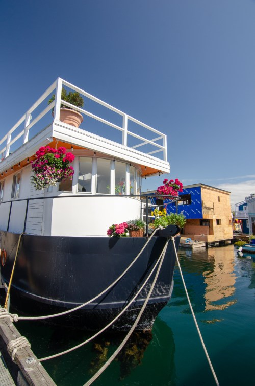 House boat covered in flowers, floating in a pier